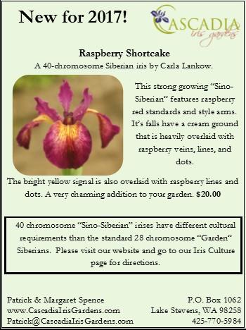 Raspberry Shortcake info sheet
